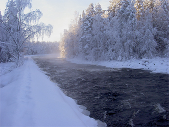 Lentuankoski Rapids flow freely also in winter. © Tuula Heikkinen