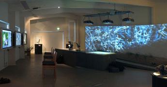 Metsähallituksen luontonäyttely esittelee Hailuodon luontoa ja kulttuurihistoriaa suurkuvan, vuorovaikutteisten paneelien ja esineistön avulla. Kuva: Timo Koho