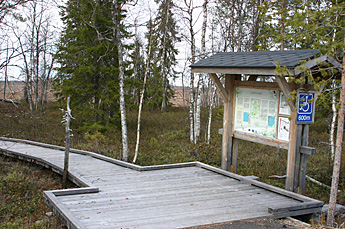 The starting point for Sokanaapa Nature Trail. Photo: Pia Arvola