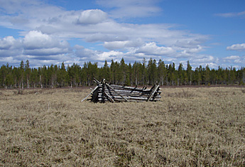 Remains of Mire hayloft. Photo: Pirjo Rautiainen