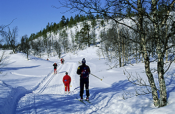 Skiers on Maintained Trails. Photo: Markku Tano
