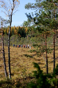 Visitors in Kurjenrahka National Park. Photo: Janne Koivuniemi