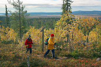 Hikers at Ruijanpolku. Photo: Kimmo Kuure