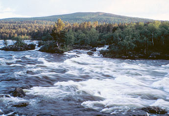 Juutuanjoki River, in the background Otsamotunturi Fell. Photo: Martti Rikkonen