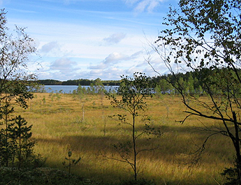 Vaskijärvi Strict Nature Reserve. Photo: Katariina Hopponen