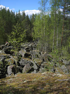 The boulders that remained in the stone quarry compose a 'rocky road'. Photo: Katri Suhonen