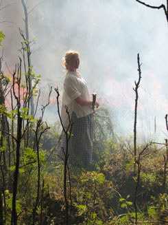 The tradition of slash-and-burn agriculture is maintained in Koli National Park. Photo: Ismo Hyttinen.