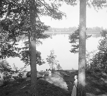 Lake Liesjärvi. Photo: Reino Kalliola