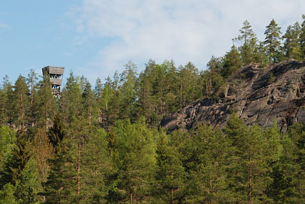 At the scenic look-out tower on Mustalamminvuori Hill visitors can see an endless sea of forest. Photo: Mari Laukkanen