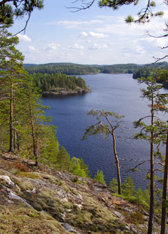 The ancient Hill Fort rises 55 metres above the water level of Lake Saimaa. Photo: Anne Pyykönen