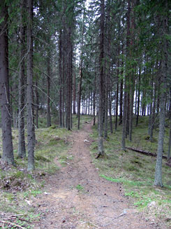 A trail on Pääjärvi. Photo: Pinja Pirttilä
