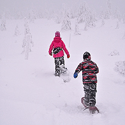 Two children on snowshoes amongst the snow-covered trees.