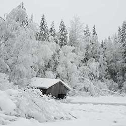 The Boathouse by Lake Liesijärvi. Photo: Erkki Piilola