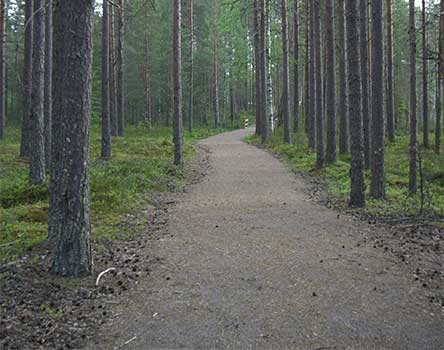 The Saari-Soljanen nature trail is accessible by wheelchair and to prams. Photo: Metsähallitus