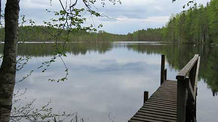 The scenic Lake Koverojärvi. Photo: Johanna Väkeväinen