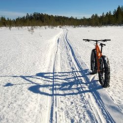 A fat bike standing in a snowbank on a mire. A wilderness trail crosses the picture.