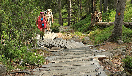 Patikointireittejä Oulangalla riittää, päiväreiteistä vaellusreitteihin. Kuva: Minna Koramo / Metsähallitus