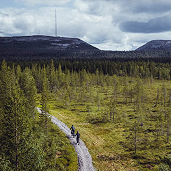 Kultakero and Ukonhattu Fells and between them Isokuru, the deepest gorge in Finland. Image: Visit Pyhä-Luosto.