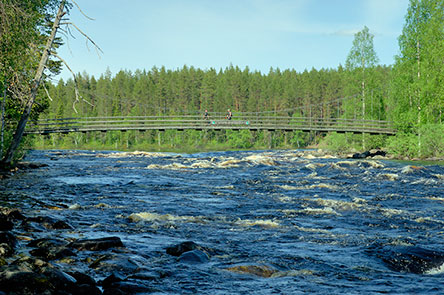 Suspension bridge of Haapavitja. Photo: Heikki Räsänen