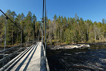 The Haapavitja suspension bridge takes you over the rapids. Photo: Heikki Räsänen