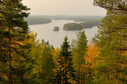 View over Lake Neitijärvi. Photo: Heikki Räsänen