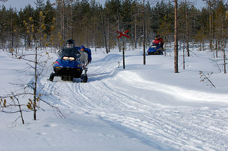 Snowmobiles on the Ruunaa route. Photo: Heikki Räsänen
