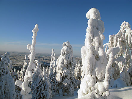 Natural Features Of Koli National Park