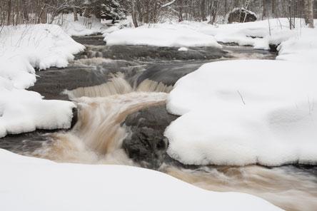 Winter cannot tame the foaming rapids in Leivonmäki. Photo: Markku Könkkölä