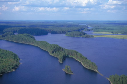 The valuable ridges of Petkeljärvi. Photo: Metsähallitus / Lentokuva Vallas