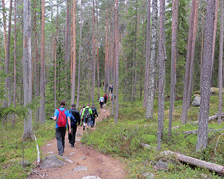 Hikers on the Kotajärvi Trail. Photo: Maija Mikkola.