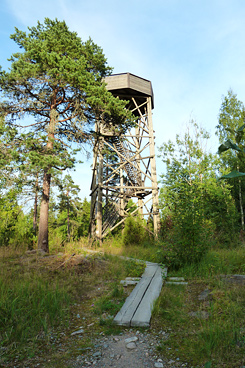 A campfire site and a nature observation tower on the islet of Kiljamo. Photo: S-M Hiukkamäki