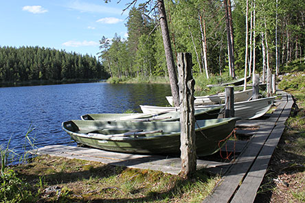 Boats in Lake Niemisjärvi. Photo: S-M Hiukkamäki