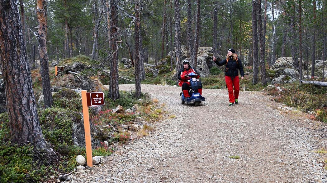 Two persons on an accessible trail in an autumn pine forest. One of the persons is sitting in an electric wheelchair.