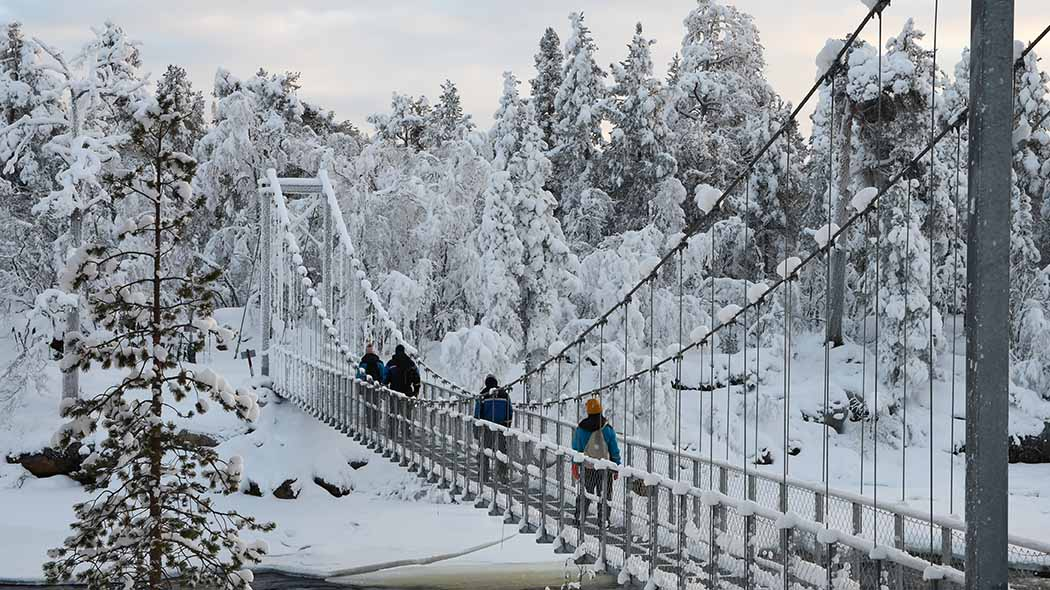 Four hikers crossing a metal bridge. A wintry landscape can be seen in the background, with trees covered in a thick layer of snow. The rails and wires of the bridge are also covered in snow.