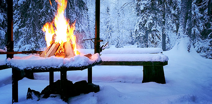 There is a campfire on the fireplace in a snowy forest.