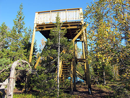 Ryläys observation tower. Photo: Matti Reivi