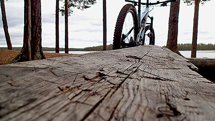 Close-up of a simple wooden bench. A bicycle is visible in the background.