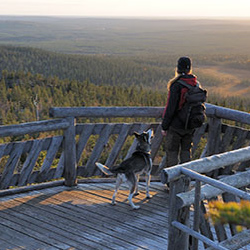 Your hike along Huippupolku Trail will be crowned by the views opening out from the observation tower. Photo: Vastavalo / Antje Neumann
