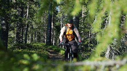 A mountain biker on a trail in the woods.