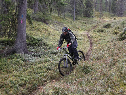 A mountain biker on a narrow part of the Toraslampi mountain biking trail.
