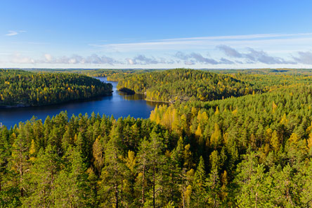 Repovesi National Park. Photo: Vastavalo/Teuvo Salmenjoki