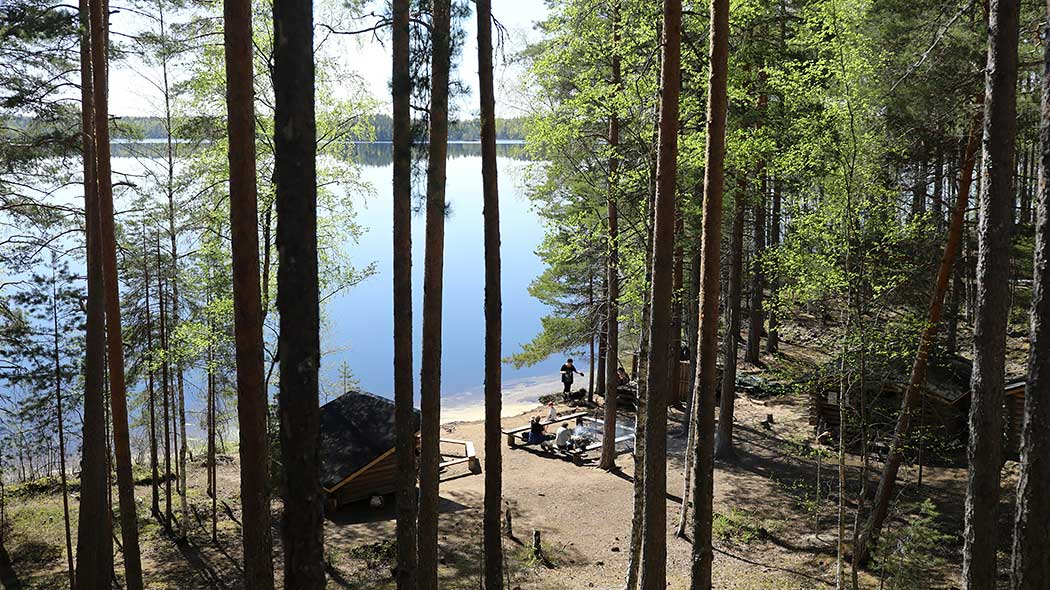 Campfire site on a sandy beach photographed from above. Surrounded by a summery forest, a calm lake in the background.