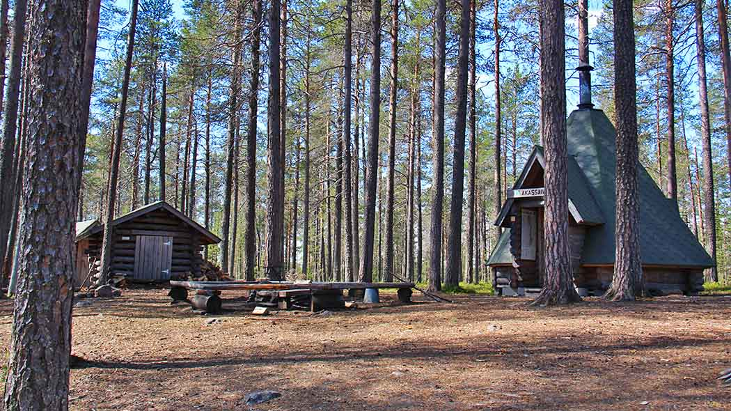 A lapp-hut, fire pit and a small log building in a pine forest.
