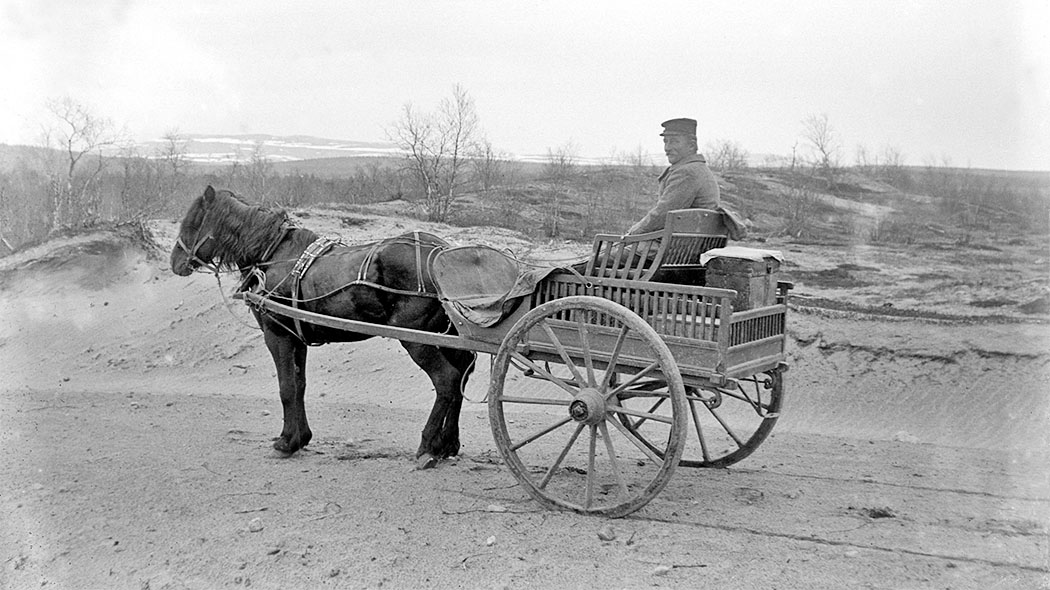 A horse pulling a carriage, a man is sitting in the carriage. A fell can be seen in the background.