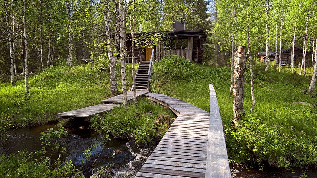 In the front there is a wooden pedestrian bridge over a river, the bridge takes to a hut surrounded by summer forest.