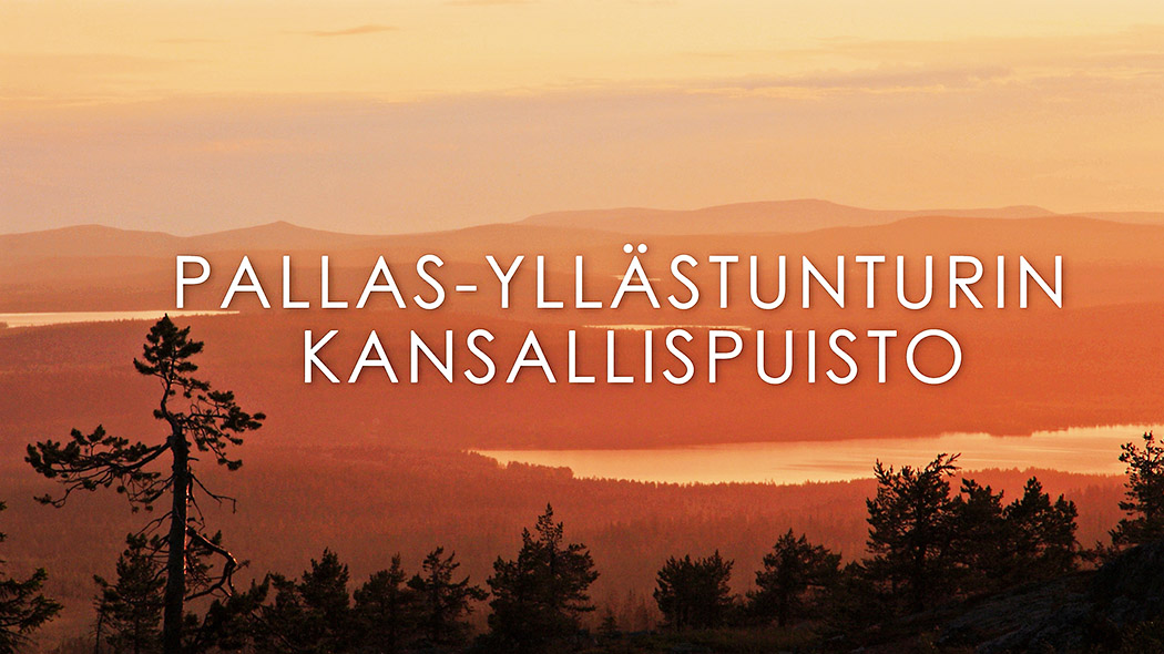 A fell landscape. The text Pallas-Yllästunturi national park is written in Finnish in the middle of the picture.