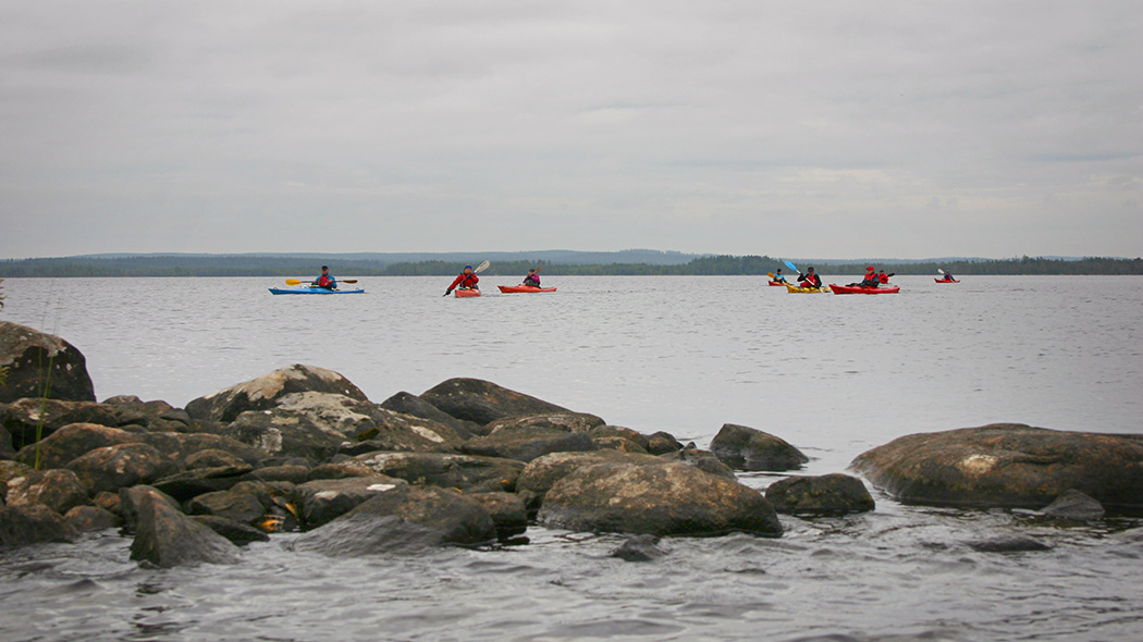 Eight people paddling kayaks on a cloudy day at a lake. In front there's rocks visible from the lake and in the back an undulating terrain of forest.