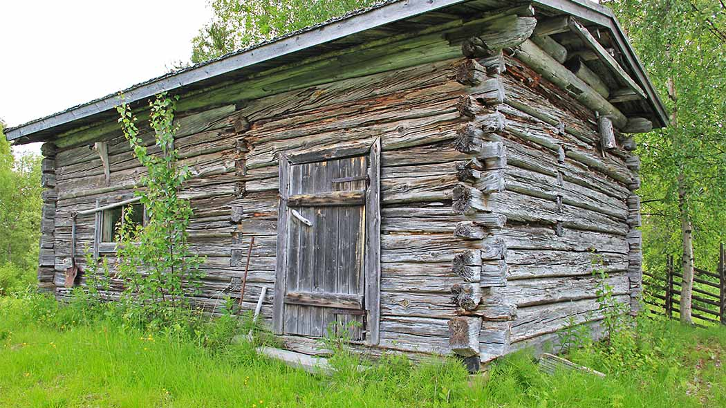 An old wooden building during the summer. An old shovel is hanging on the wall. There are birch trees and a wooden fence in the background.