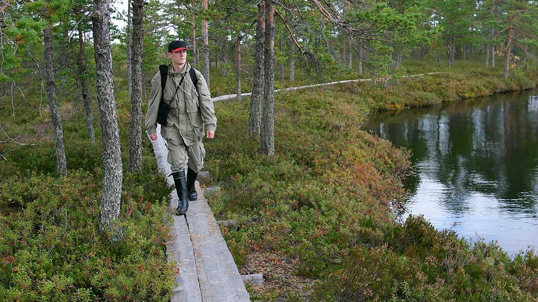 Kauhaneva Pohjankangas National Park Trails Nationalparks Fi