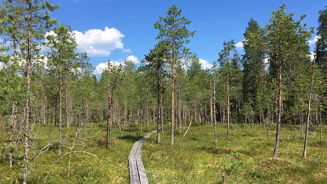 ebe8e5cf58b78 Hiidenportti National Park Trails - Nationalparks.fi